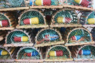 lobster-cage-2073032_640